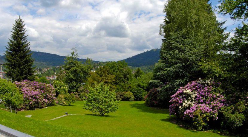 Außen -Park im Frühling